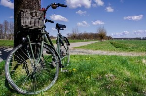 bicycle, green, eco friendly
